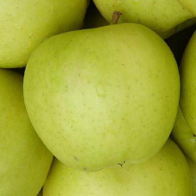 manzana-84